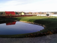 Рулонный газон в Ярославле
