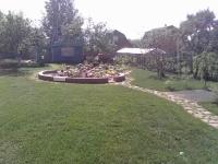 Рулонный газон 'Городской' в Ярославле